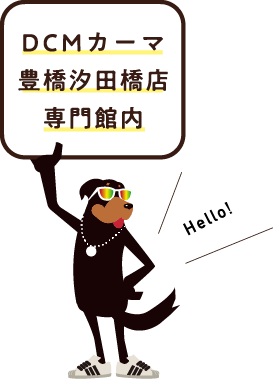 DCMカーマ豊橋汐田橋店専門館内