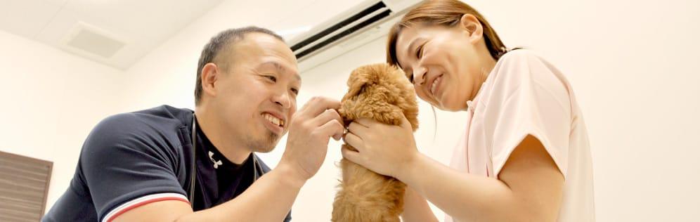 オリバ犬猫病院 写真